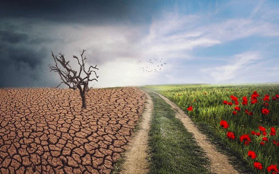 Impact van de klimaatverandering op het beleggingsrendement