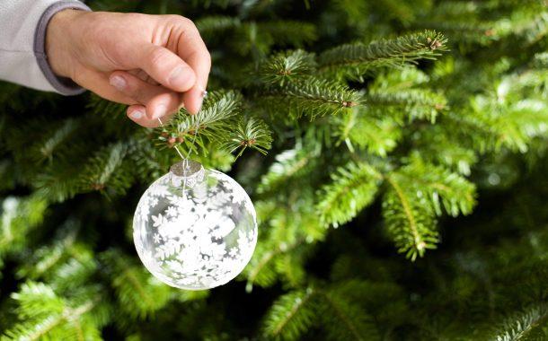 Jaaroverzicht: Tips om het kerstdiner te overleven